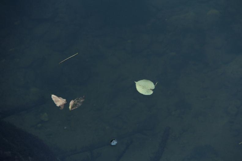 Visual Poetry #35 (A Haiku on Water)